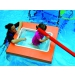Baby pool LMP